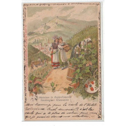 RIBEAUVILLE  : weinlese in...